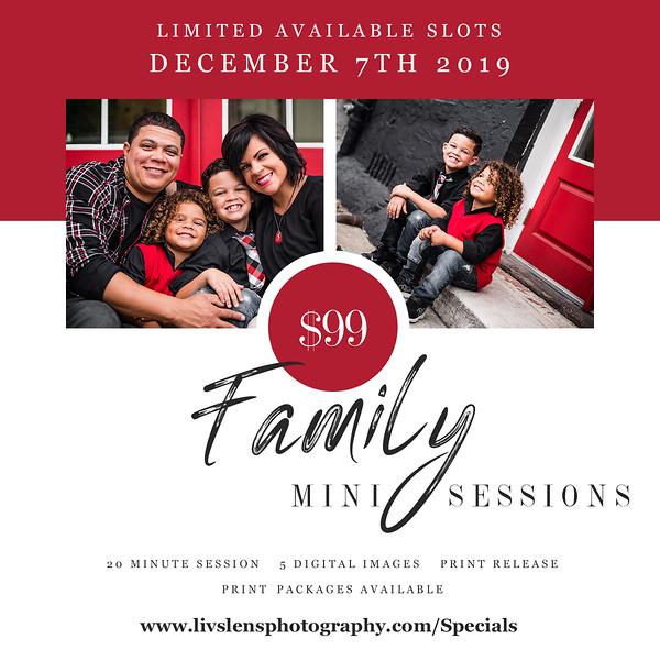 Family Sessions 2019.jpg