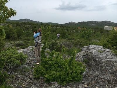 Birding Croatia