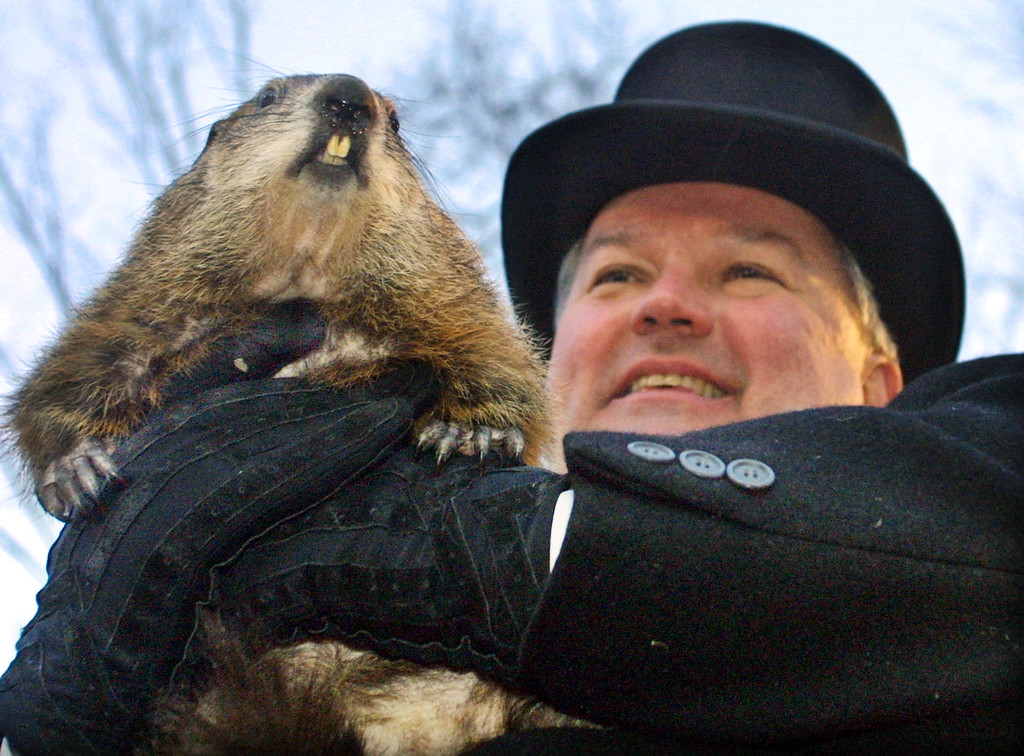 . Punxsutawney Phil is held by handler Bill Deeley after emerging from his Gobbler\'s Knob burrow at sunrise Saturday Feb. 2, 2002 before a record crowd of some 25,000 in Punxsutawney, Pa.. Phil saw his shadow and predicted six more weeks of winter weather. (AP Photo/Gary Tramontina)