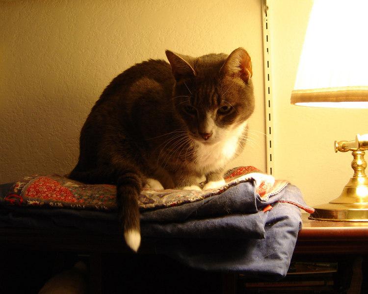 2007 02 21 - Hanging w_Lisa and Tim 17.JPG