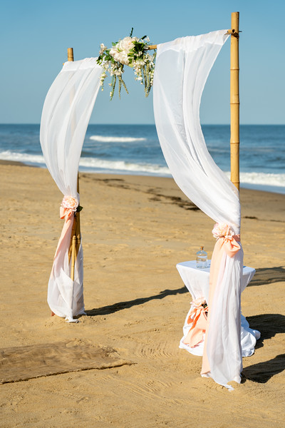 VBWC STAR 10122019 Wedding #5 (C) Robert Hamm.jpg