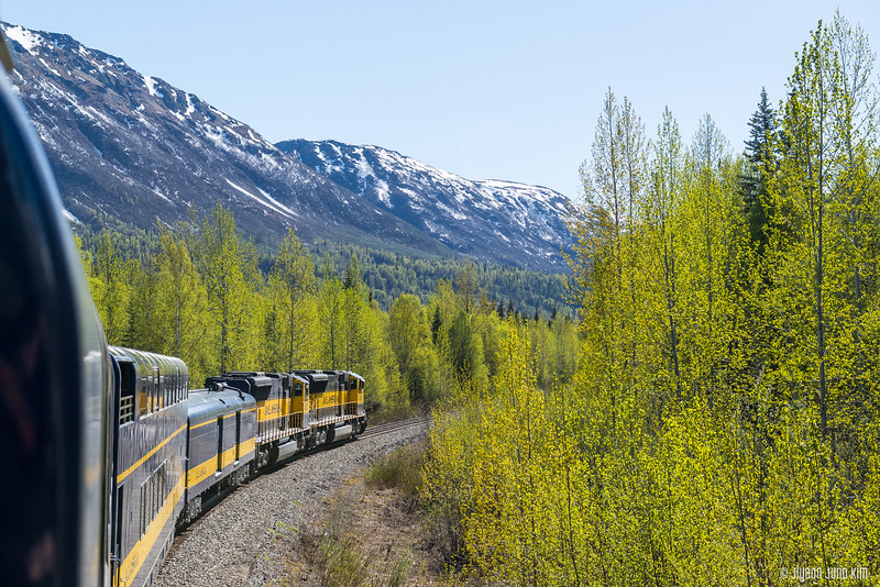 Denali Star Train-6109248-Juno Kim.jpg