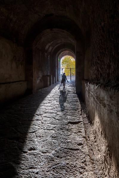 Pompeii 7023.jpg