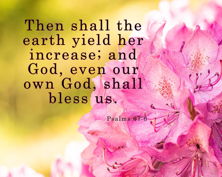 psalm 67 6.jpg