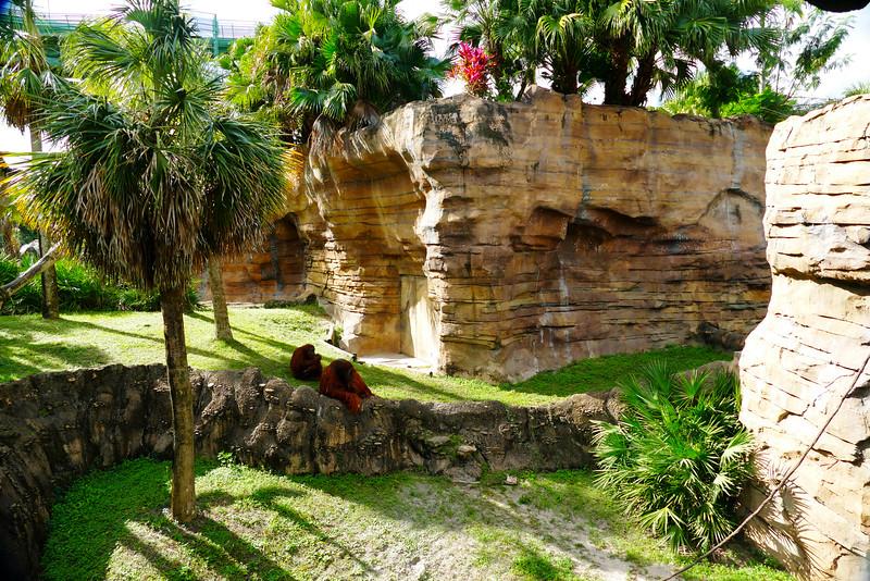Busch Gardens - 5.jpg