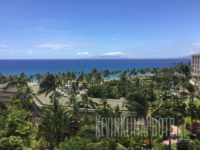 HawaiiPhonePics-376.JPG