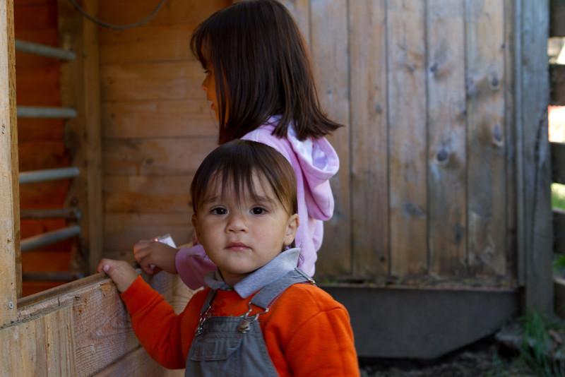 PumpkinPatch2012-114.jpg