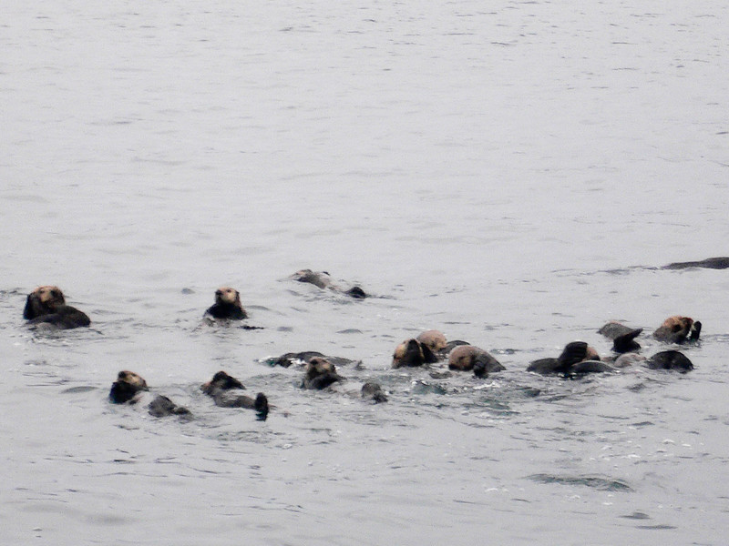 Alaska 2009-693.jpg