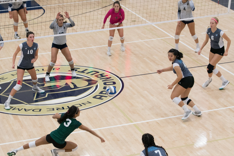 HPU Volleyball-92794.jpg