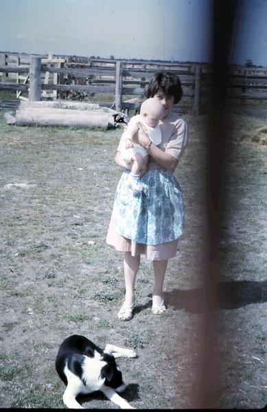 1964-3-20 (19) David 3 mths.JPG