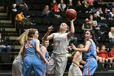 Basketball - LHS Girls 2018-19 - Glendale Ozone
