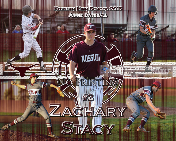 Zackary Stacy Collection