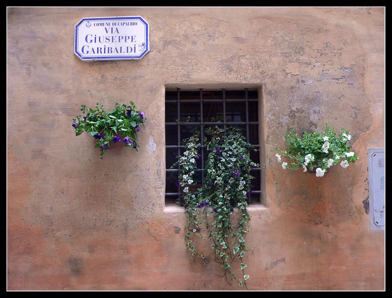 2005-04 Capalbio 255.jpg