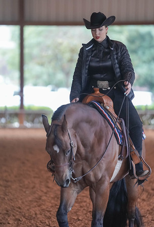 SMU Equestrian Vs Auburn 11-8-2019