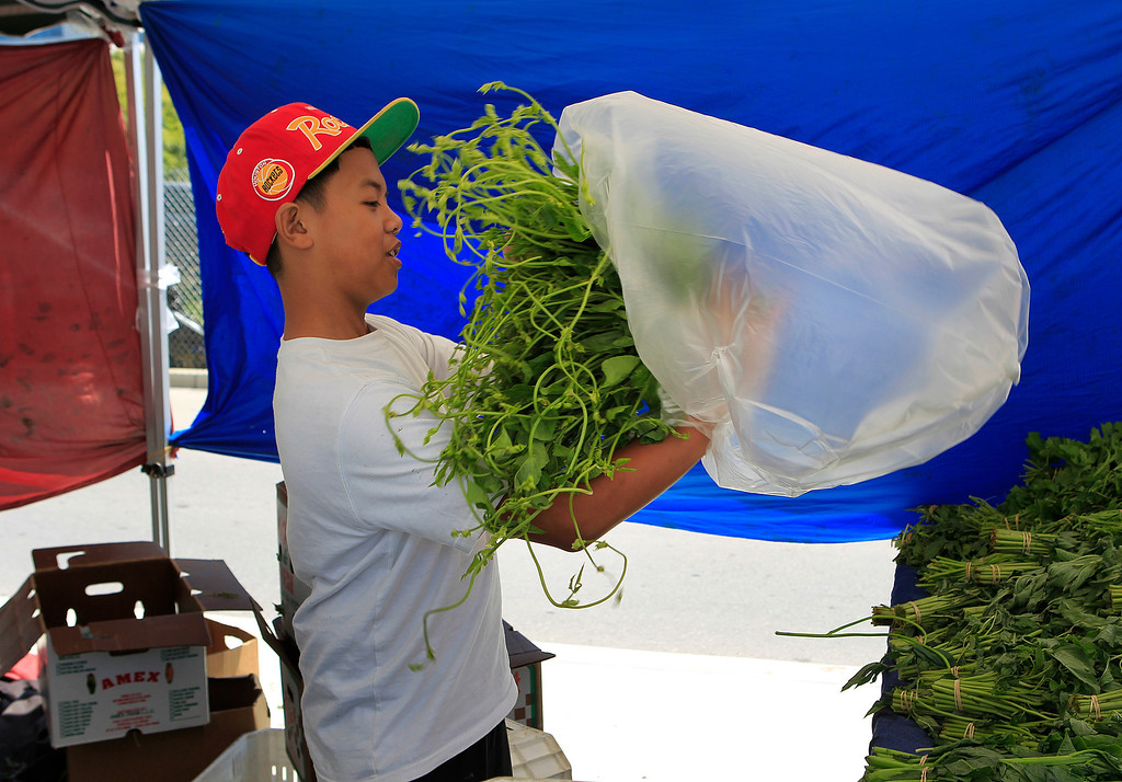. Fredyrick Andres (cq) of Fresno\'s Three Brothers Farm, bags pea tips at the new Santa Clara Valley Medical Center Farmer\'s Market in San Jose, Calif. on Wednesday, May 15, 2013.  (LiPo Ching/Bay Area News Group)