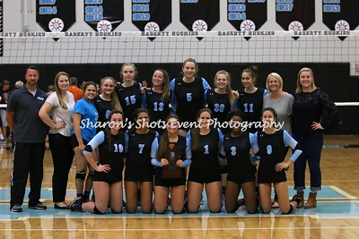 Volleyball v Harmony (District Champs)