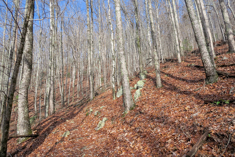 Appalachian Trail -- 2,250'