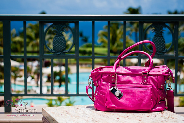 Epiphanie Number Two, Pink Belle, also got to vacation at the Ritz-Carlton Kapalua.