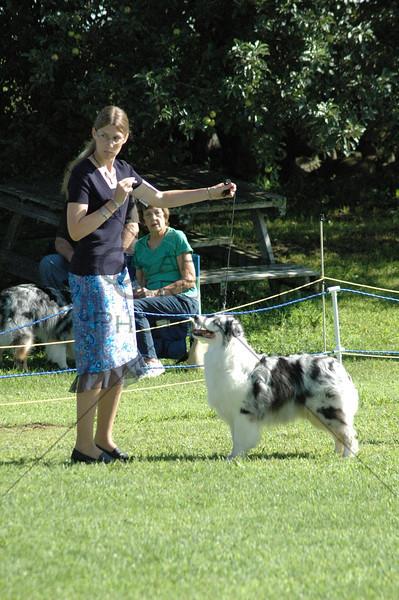 HONYASC DDS2008 Sat Alt, Jrs, Pups