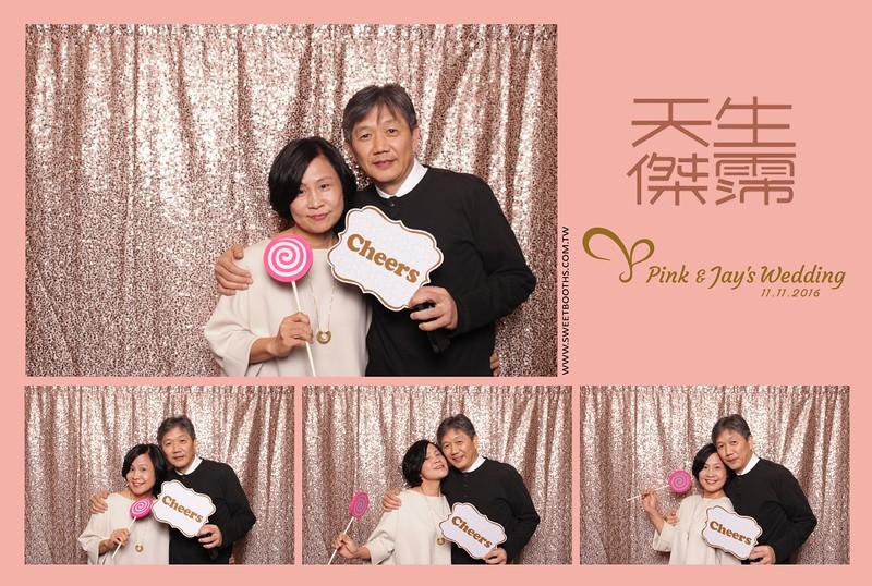 Pink.Jay (111).jpg