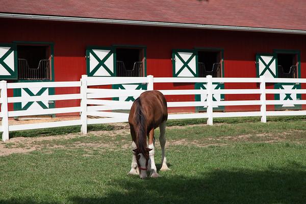 Grant's Farm MO