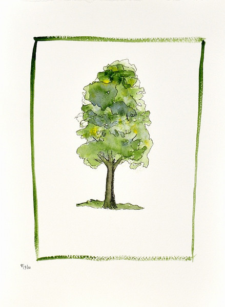 7 Aug 2010: My wife, Julie, took an art class last week. This is one of her watercolors.