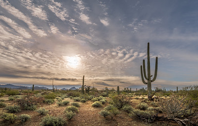 I-11 -  What Would be Lost -  Landscapes