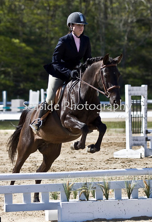 Horseshows 2010