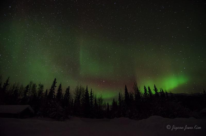 USA-Alaska-Wiseman-Aurora-2933.jpg