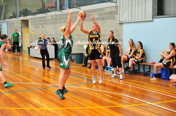 Shoalhaven Tigers vs Newcastle Hunters (Rd 7)