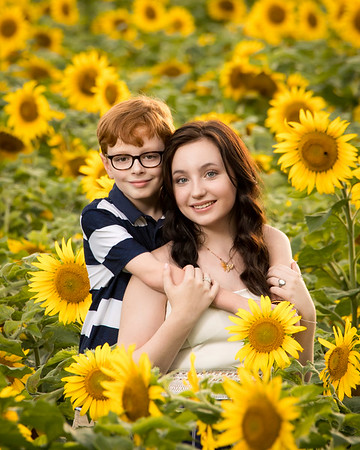 2020 Brown Family in Sunflowers