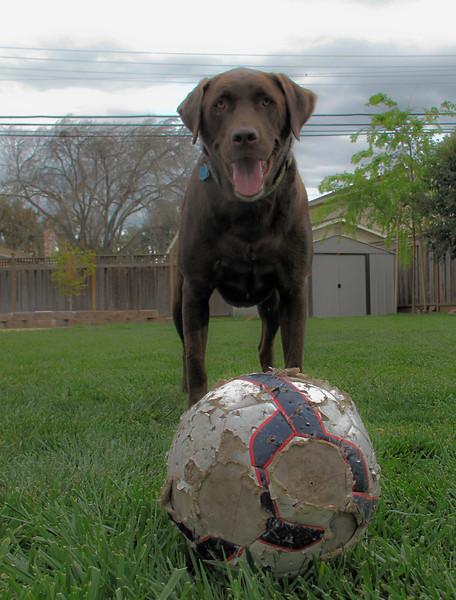 Riley-soccer-ball-1.jpg
