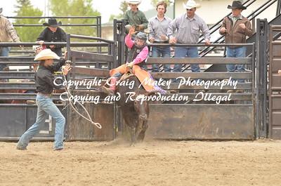 Short Go Steers Bareback 05-23-15