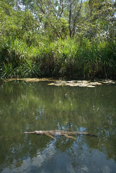 01.05.2009 - Darwin