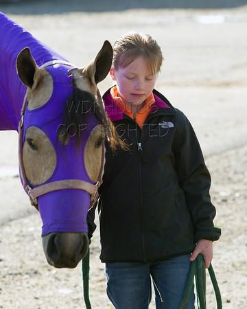 3 Horse Show Series 5/19/2012
