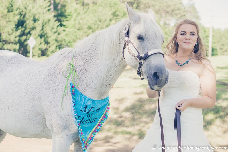 Wedding_summer_WI_outdoor_horse-1.jpg