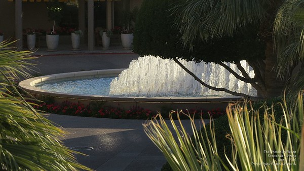 The Phoenician Resort March, 2019