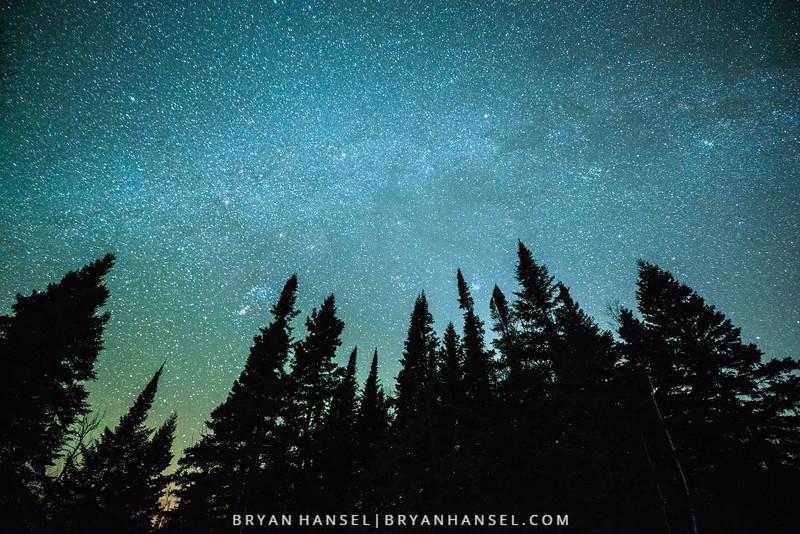 Winter Milky Way over Trees