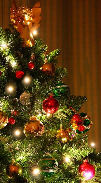 SheenaD_Christmas tree.jpg
