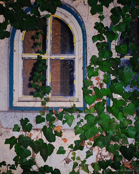 Italy D097velvia.jpg