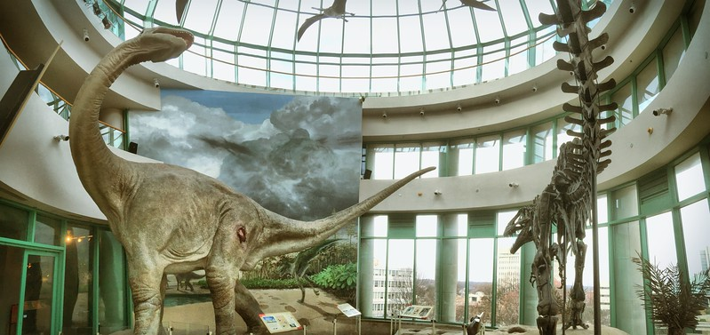 Dinosaur battle in Museum of Natural Science