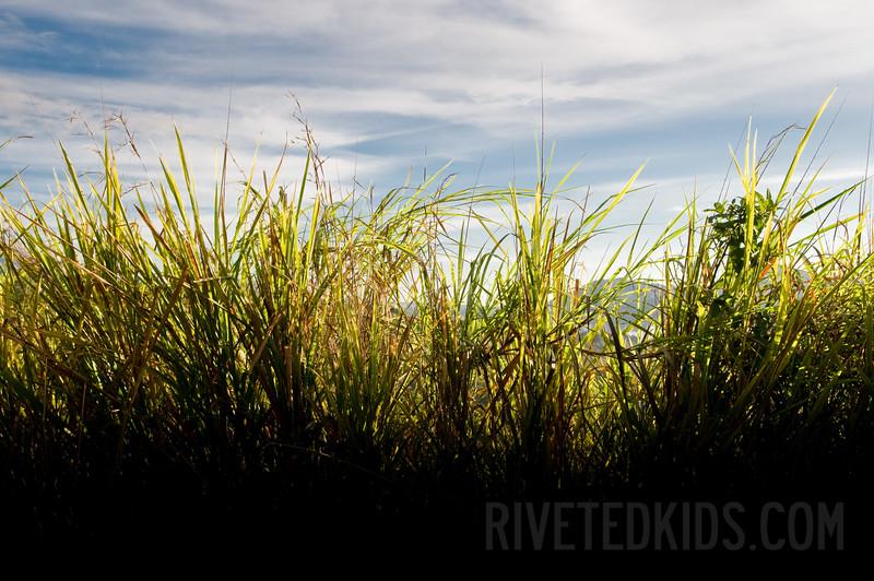 2009_01_Costa_Rica_391