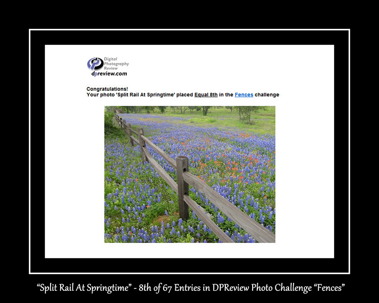 16-DPReview Split Rail at Springtime 8th place of 100 Entries.jpg