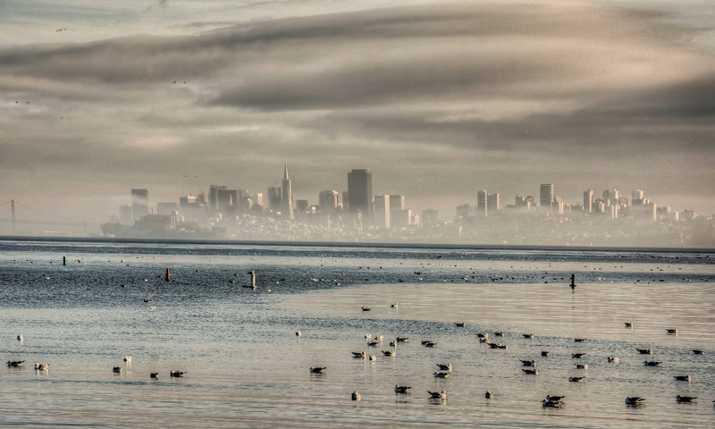 foggy-san-francisco-skyline.jpg