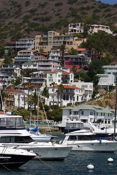 Santa Catalina Island / California
