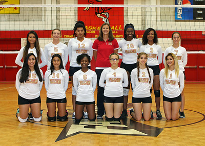JV/VARSITY VOLLEYBALL TEAM PICS