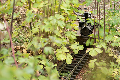 Garden Railroad 2017