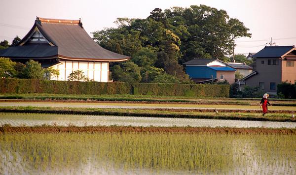 KAWACHI FIELDS - 15 MAY, 2008