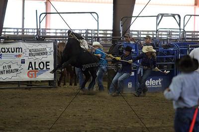All Girl Rodeo Calf Race