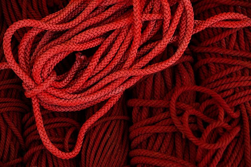 Camel Ropes.jpg